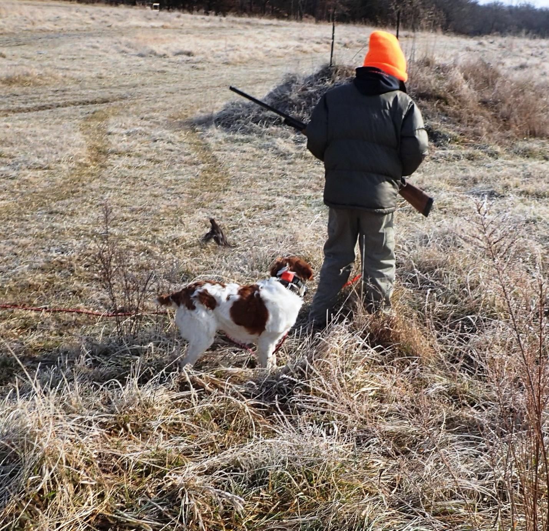 Rye hunting